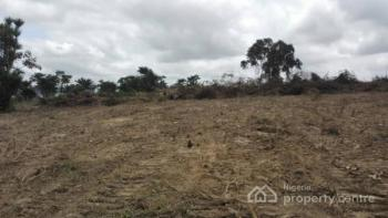 Land with C of O, Christal Villa Kentops, Elebu, Oluyole Extension, Ibadan, Oyo, Mixed-use Land for Sale
