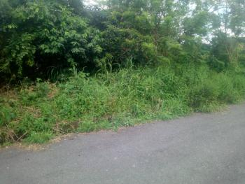 4,000 Acres Good  for Housing Estate, Along Iseyin Ibadan Road Moniya, Akinyele, Oyo, Commercial Land for Sale