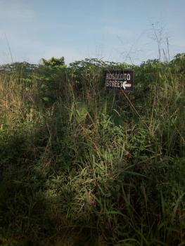 40,000 Acres with Court Judgment, Alaka Village, Fiditi Area, Itesiwaju, Oyo, Commercial Land for Sale