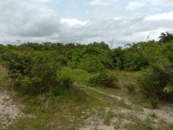 204 Acres with Tec Copy Survey Plan, Oniganga Village, Off Eruwa/ibadan Road, Ido, Oyo, Commercial Land for Sale