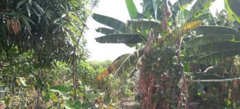 Land, Ikotun, Lagos, Mixed-use Land for Sale