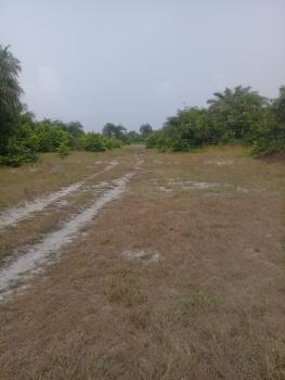 Approx 100 Acres of Land, Ibeju, Lagos, Mixed-use Land Joint Venture