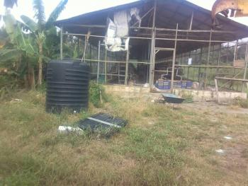 Farm Land Available for Sale in Epe, Lagos, Egansoyindo, Epe, Lagos, Commercial Land for Sale