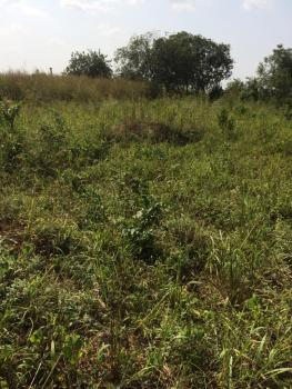 1 Acre of Land with a Standard Poultry Building on It, Itori Onikoko Village, Ewekoro, Ogun, Commercial Land for Sale