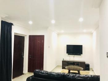 Stylishly Furnished One Bedroom, Off Palace Road, Oniru, Victoria Island (vi), Lagos, Mini Flat Short Let