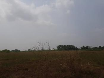 Berry Court, Badore, Ajah, Lagos, Mixed-use Land for Sale