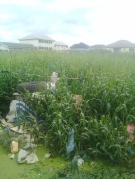Land with C of O, Ago / Okota Road , Apple Junction, Amuwo Odofin, Isolo, Lagos, Commercial Land for Sale