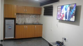 Furnished & Exquisite 1 Bedroom Apartment, Kofo Abayomi Street, By International Hotel, Victoria Island (vi), Lagos, Mini Flat for Rent