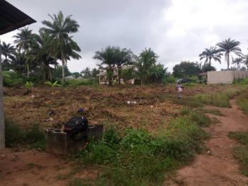 Fenced and Gated 2 Plots of Dry Land, Bandu Town, Age Mowo, Badagry, Lagos, Mixed-use Land for Sale