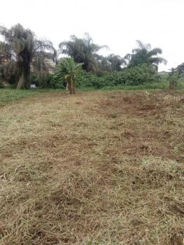 2 Acres of Land, Samuel Agbegunde at Off Celestial Av, Okeira, Ogba, Ikeja, Lagos, Mixed-use Land for Sale