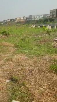 Berry Courts, Omole Phase 2 Extension, Omole Phase 2, Ikeja, Lagos, Residential Land for Sale