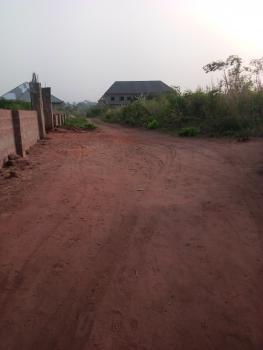 Genuine Plot of Land, Opposite Okpanam Junction, Asaba, Delta, Residential Land for Sale