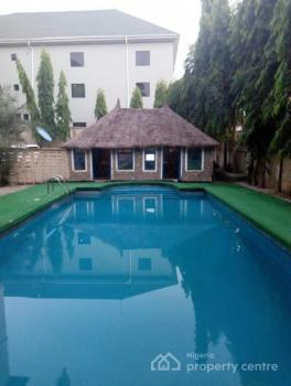 Diplomatic Serviced 3 Bedroom Flat with a Bq, Pool, Gym Room, Ideally for Expatriates, Maitama District, Abuja, Flat for Rent