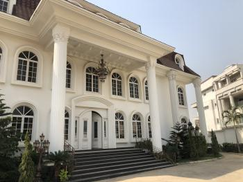 All White 10 Bedroom Luxury / Royal Mansion, Asokoro District, Abuja, House for Sale