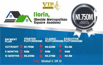 Vip Gardens, Beside Metropolitan Square Asadam, Ilorin West, Kwara, Residential Land for Sale