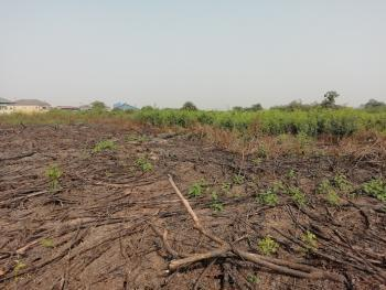 Uprooted 50 Acres of Land for Sale, Ilosi Abuke Village Along Bat Company Road, Iseyin Abeokuta Road 10 Munites Drive From Th Expressway, Iseyin, Oyo, Industrial Land for Sale