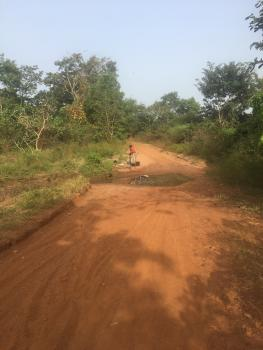 50 Acres of Farmland, Iseyin Ikere Gorge Dam Road, Iseyin, Oyo, Commercial Land for Sale