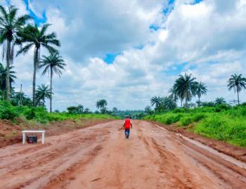 500 Acres of Land, Behind Shina Farm Iseyin Oyo Express  Way, Opposite Oje Village, Iseyin, Oyo, Commercial Land for Sale