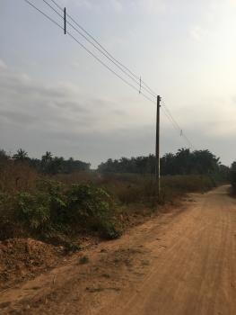 13 Acres of Land Suitable for Commercial Purposes with C of O, Iseyin-oyo Road, Km 2, Iseyin. Faces The Road Directly and Along The Just Commissioned Saf Polythenic, Iseyin, Oyo, Commercial Land for Sale