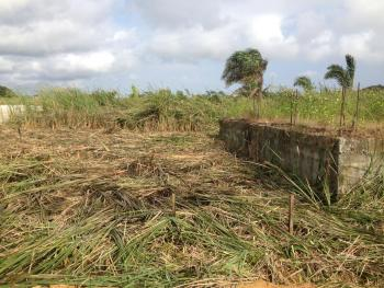 12 Acres of Land That Suitable for Plantain, Aige Village Off Iseyin Ibadna Express  Way, 30 Minutes Drive From The Express Way, Iseyin, Oyo, Commercial Land for Sale