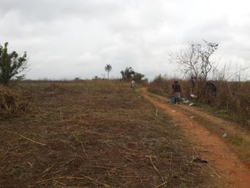 12,000 Acres Farm Land, Okaka Town Iseyin Shaki Express Way, 40 Minutes Drive From Express, Itesiwaju, Oyo, Commercial Land for Rent