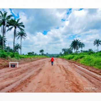 Berry Court, Sagamu Interchange, Behind Flower Gate Ogun State, Sagamu, Ogun, Residential Land for Sale