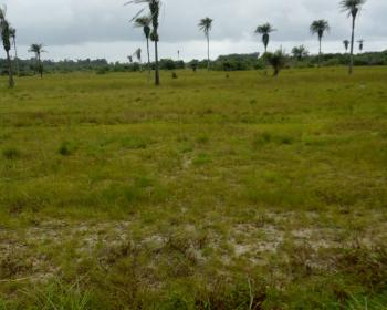 3600sqm with Petrol Station Approval, Directly Facing Providence Road, Lekki Phase 1, Lekki, Lagos, Commercial Land for Sale