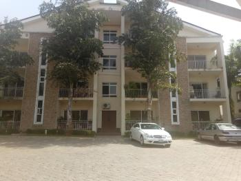 Serviced 3 Bedroom Flat with Servant Quarters,swimming Pool,  Generator and Air Conditioners, Nile Street, Maitama District, Abuja, Flat for Rent