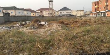 Land with Governors Consent, Agungi, Lekki, Lagos, Residential Land Joint Venture