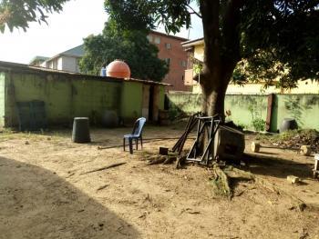 Land, Emily Akinola Street, Akoka, Yaba, Lagos, Mixed-use Land for Sale