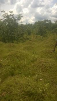 Land for Sale in Anambra State, Amaenyi, Awka, Anambra, Mixed-use Land for Sale