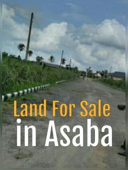 Land, Okpanam Rd, Dla, Summit, Infant Jesus, Nnebisi Rd, Ibuzor Rd, Asaba, Delta, Residential Land for Sale