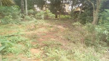 One Plot of Land (fenced with C of O), 1, Obukpa Layout, Gra, Nsukka, Enugu, Mixed-use Land for Sale