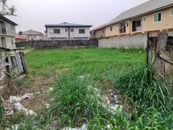 One Full Plot of Dry Land, Seaside Estate, Badore, Ajah, Lagos, Residential Land for Sale