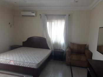 Furnished 1 Bedroom Flat with 2 Toilets,  Standby Generator, By Nico Luxury, Area 11, Garki, Abuja, Mini Flat for Rent