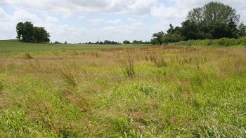 Prime Land with C of O, Isheri North, Lagos, Residential Land for Sale