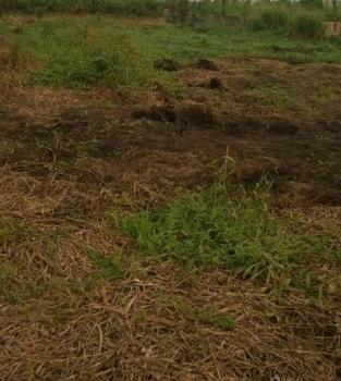 Half Plot of Land, Ago Palace, Isolo, Lagos, Mixed-use Land for Sale