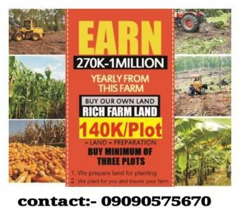 Plantain Farmland, Abeokuta North, Ogun, Land for Sale