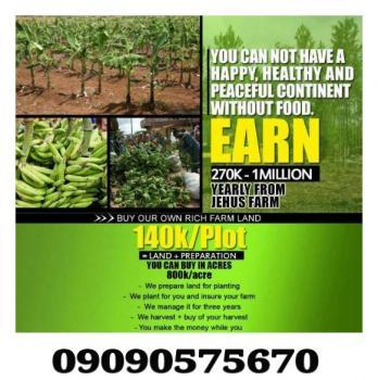 Plantain Farm Estate, Magodo, Lagos, Land for Sale