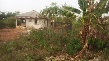 a Plot of Land with Genuine Certificate, Olusegun House 8, Itun Elepe Compound, Aga-ikorodu, Ode Lemo, Sagamu, Ogun, Mixed-use Land for Sale