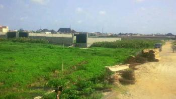 Land, 6th Avenue Extension, Festac, Isolo, Lagos, Mixed-use Land for Sale