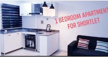 1 Bedroom Apartment Available, 67a Lafiaji Way, Dolphin Estate, Ikoyi, Dolphin Estate, Ikoyi, Lagos, Mini Flat Short Let