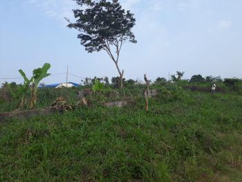 Two Plots of Land with C of O, Along Mayegun Road, Loburo Near Mowe, Mowe Ofada, Ogun, Mixed-use Land for Sale