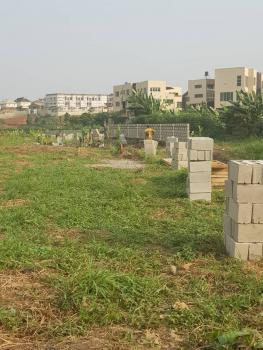 Berry Court, Omole Phase 2 Extension, Sharing Boundary with Magodo Phase 2, Omole Phase 2, Ikeja, Lagos, Residential Land for Sale