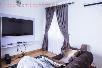 1 Bedroom Apartment, Area 2, Garki, Abuja, Mini Flat Short Let