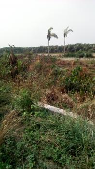 Land, Okunu, Ogombo, Ajah, Lagos, Mixed-use Land for Sale