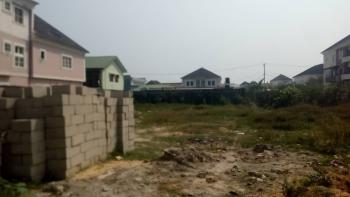Plot of Land Measuring 650sqm, Ikate Right Side, Ilasan, Lekki, Lagos, Mixed-use Land for Sale