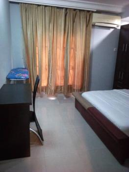 Tastefully Furnished and Serviced Two Bedroom Flat, Off Isaac John Street, Ikeja Gra, Ikeja, Lagos, Flat for Rent