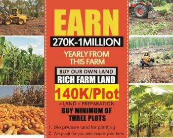 Plantain Plantation, Remo North, Ogun, Commercial Land for Sale