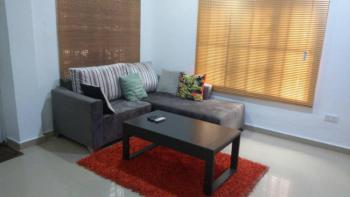 Large Furnished & Serviced Studio Apartment on The Ground Floor, Off Chevron Drive, Alternative Route,, Lekki, Lagos, Mini Flat Short Let